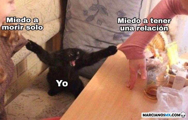 Marcianadas 349 281918001723 (141)