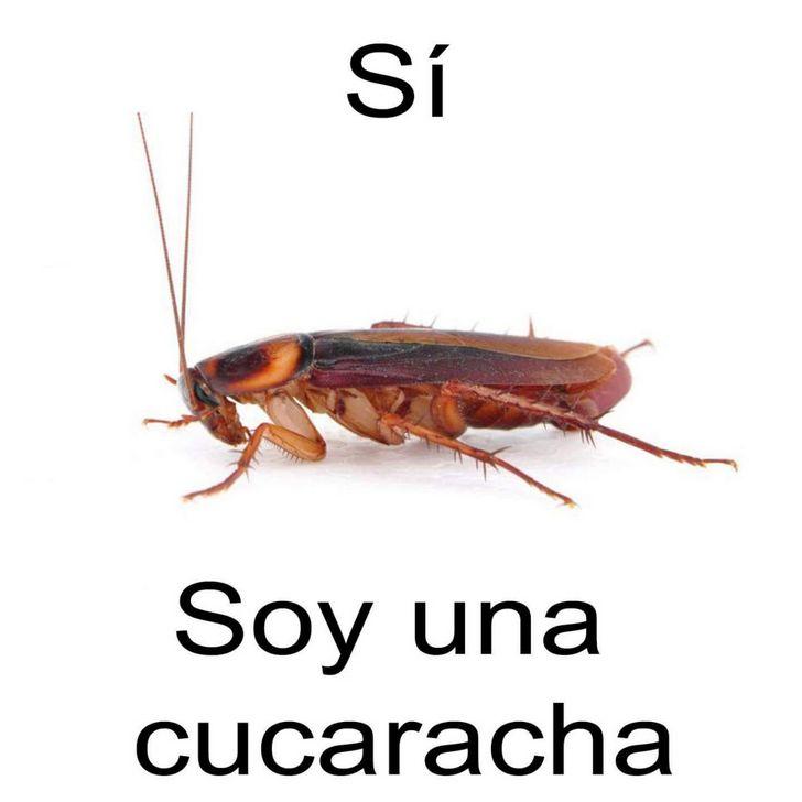 Marcianadas 349 c6 (6)