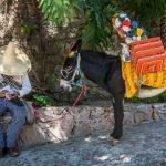 Mexicano con sombrero descansando