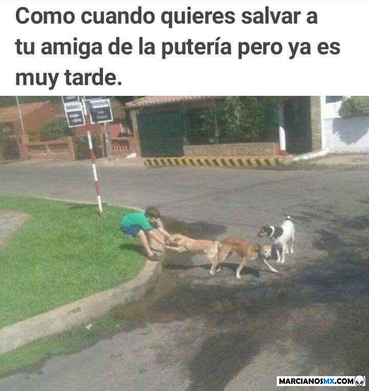 Marcianadas 251 121018001419 (82)