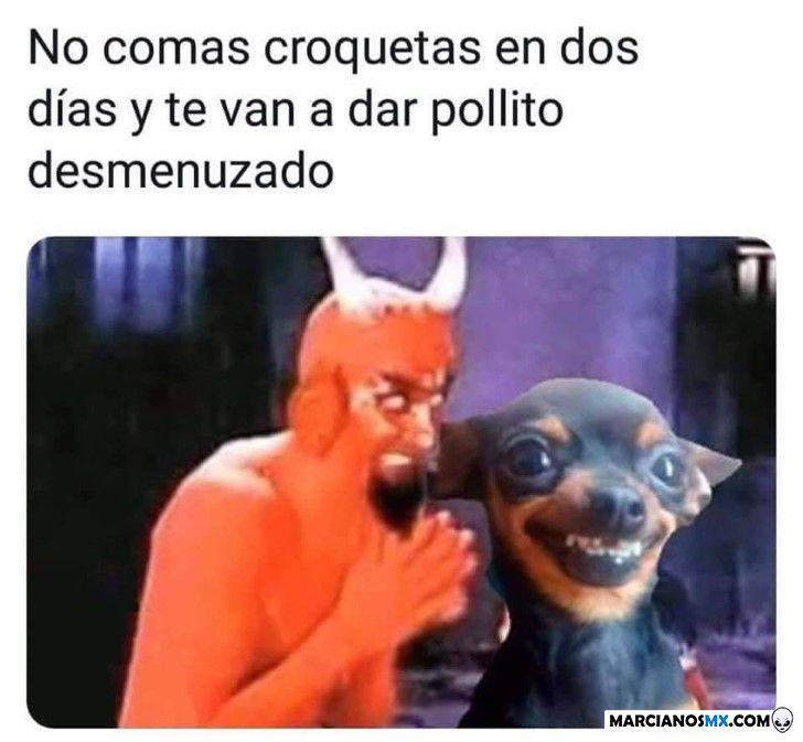 Marcianadas 251 121018001419 (90)