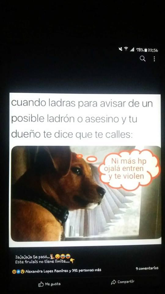 Marcianadas 350 051018001514 (100)