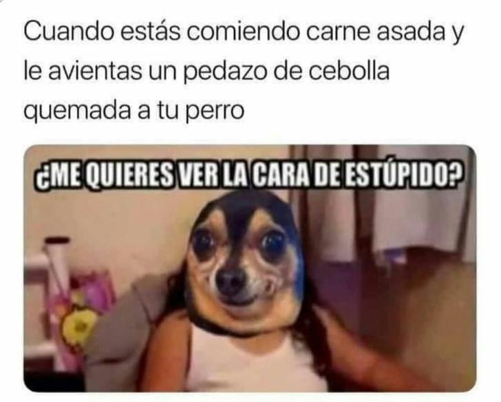 Marcianadas 350 051018001514 (179)
