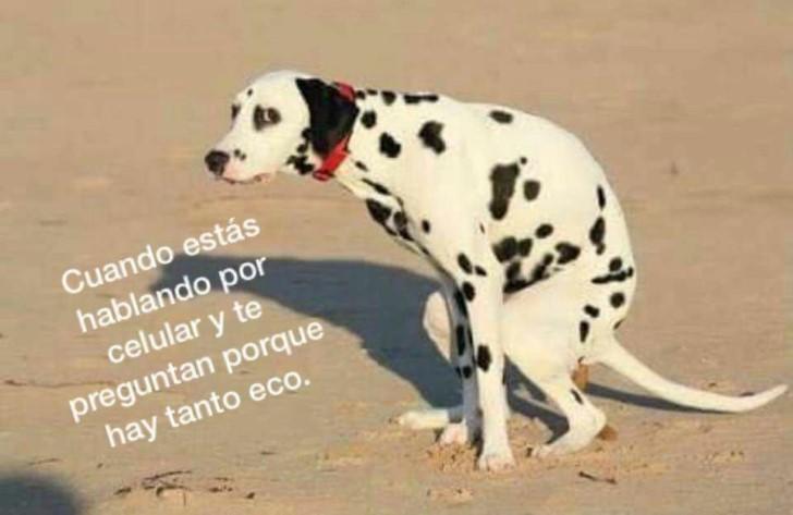 Marcianadas 350 051018001514 (184)