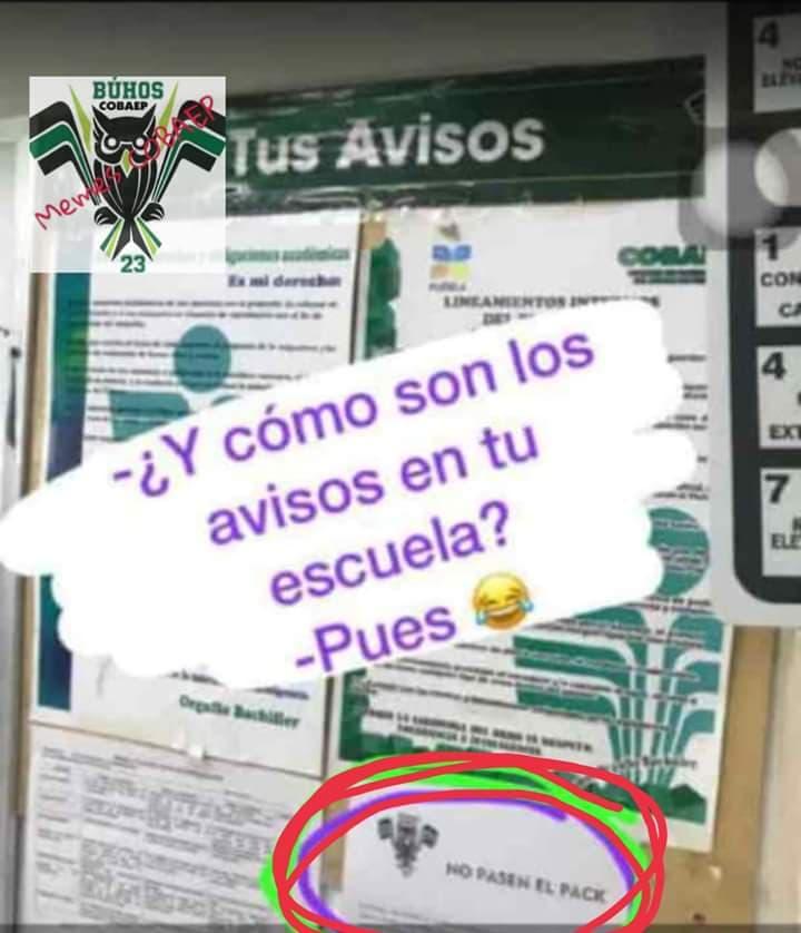 Marcianadas 350 051018001514 (89)