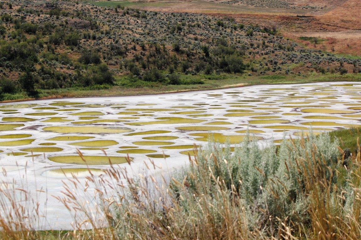 osoyoos spotted lake