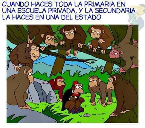 Marcianadas 357 23112018001500 (139)