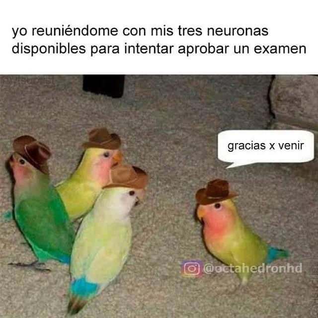 Marcianadas 357 23112018001500 (19)