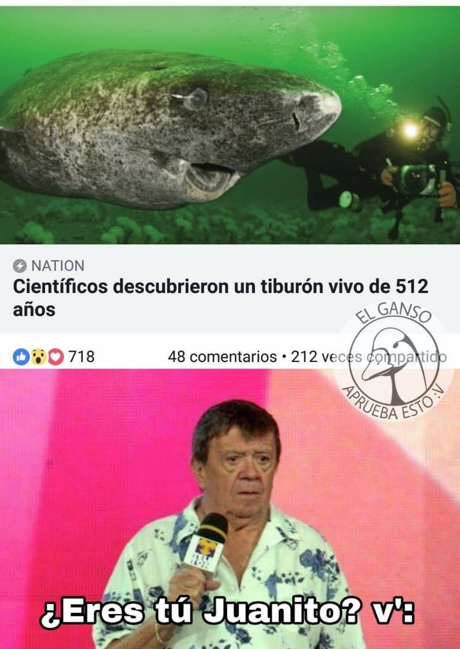 Marcianadas 357 23112018001500 (291)