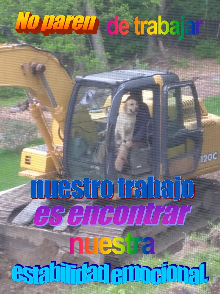 Marcianadas 358 30112018001351 (208)