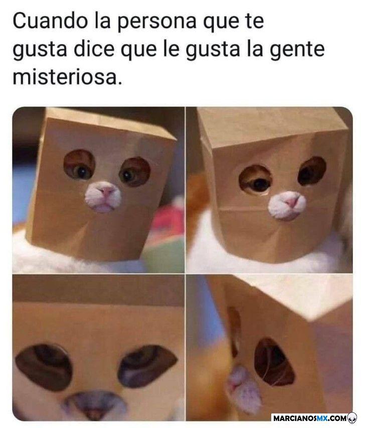 Marcianadas 358 30112018001351 (222)