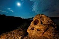 escultura de calavera sobre roca