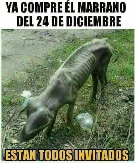 Marcianadas 359 071218001700 (20)
