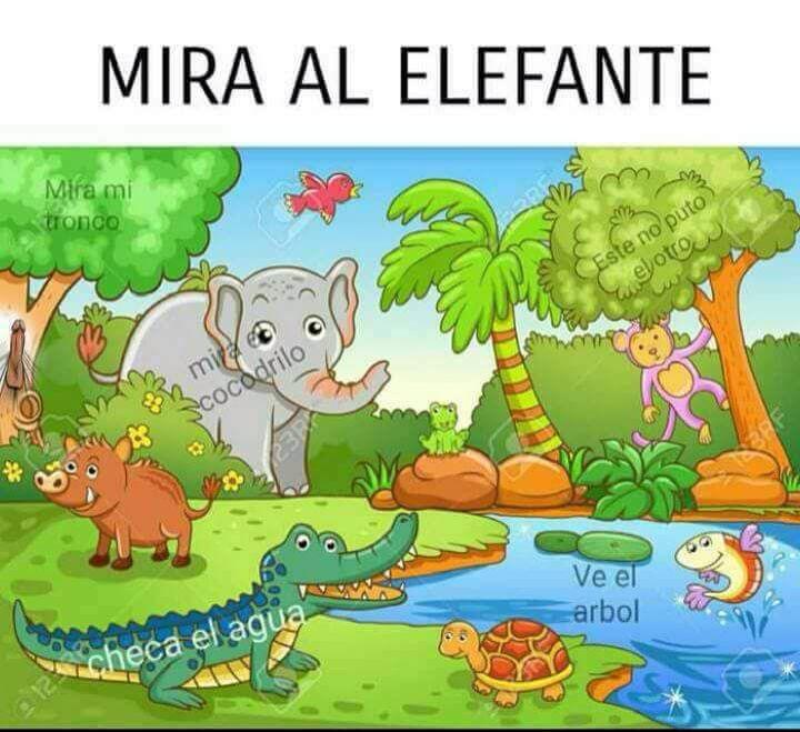 Marcianadas 359 071218001700 (39)