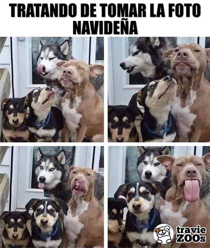 Marcianadas 360 21122018001506 (114)