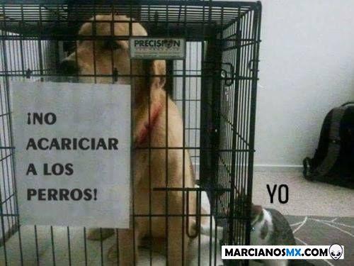 Marcianadas 360 21122018001506 (133)