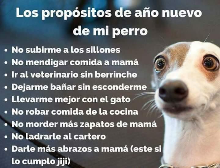Marcianadas 360 21122018001506 (174)