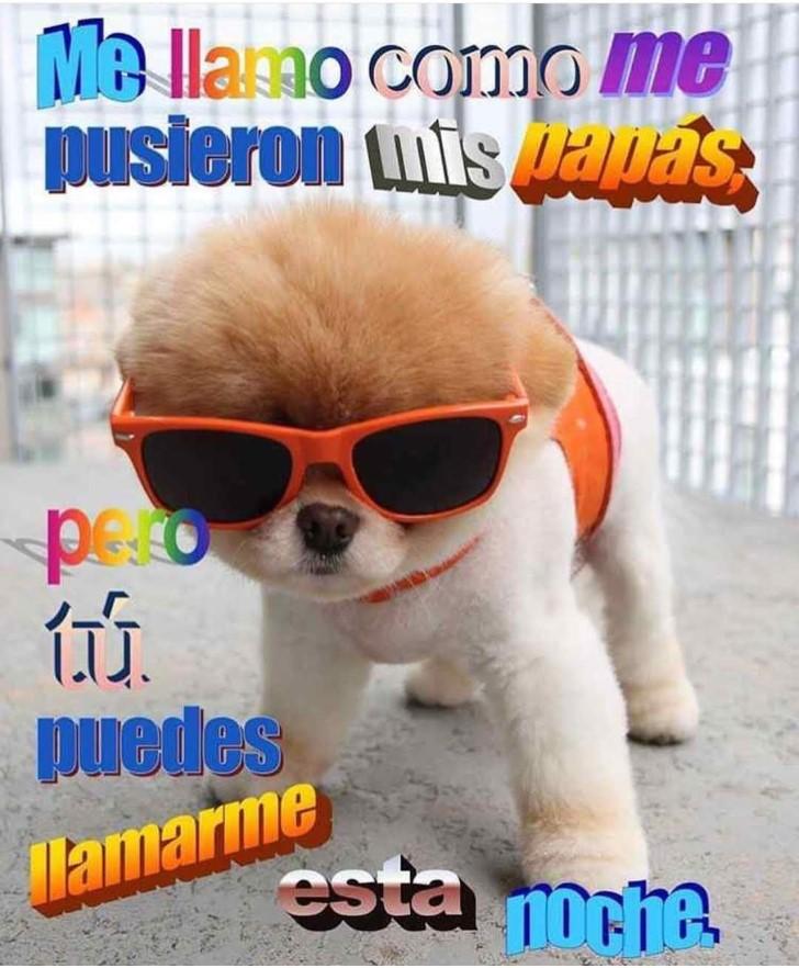 Marcianadas 360 21122018001506 (323)
