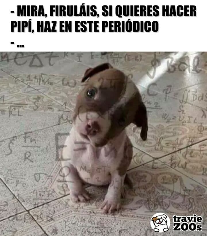 Marcianadas 360 21122018001506 (76)