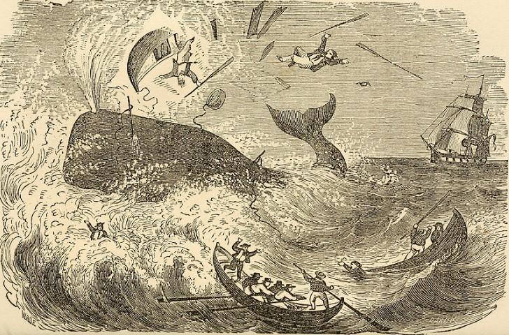 ballena hunde unos botes