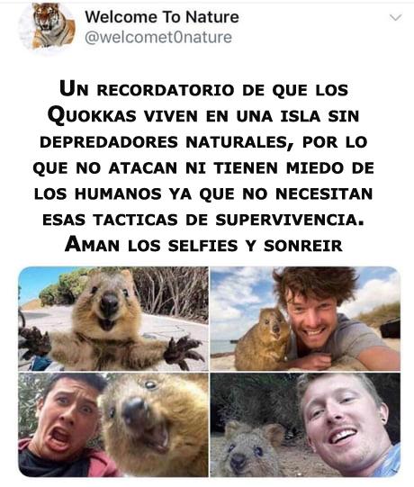 Marcianadas 361 04012019001222 (110)