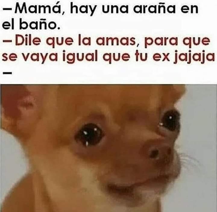 Marcianadas 361 04012019001222 (158)