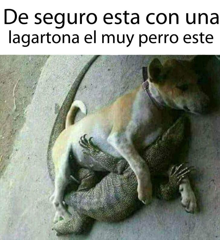 Marcianadas 361 04012019001222 (164)