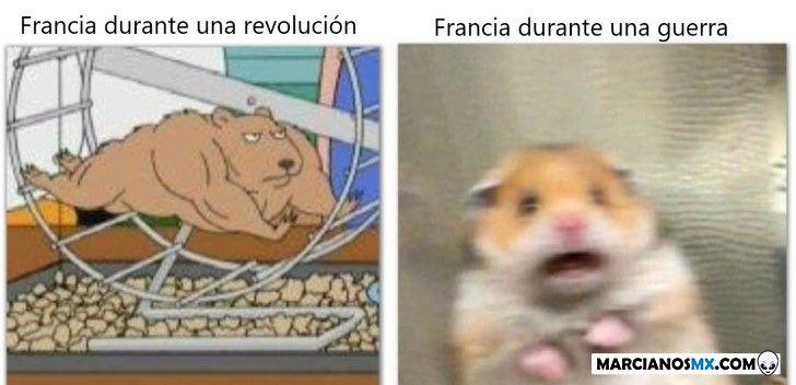 Marcianadas 361 04012019001222 (201)