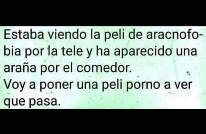 Marcianadas 361 04012019001222 (297)