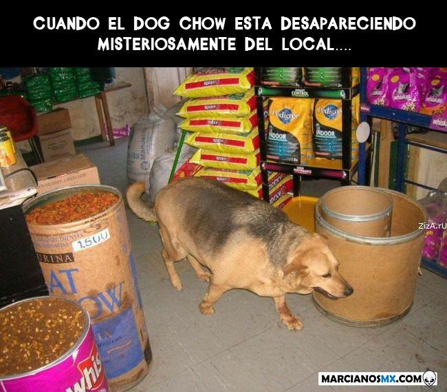 Marcianadas 361 04012019001222 (328)