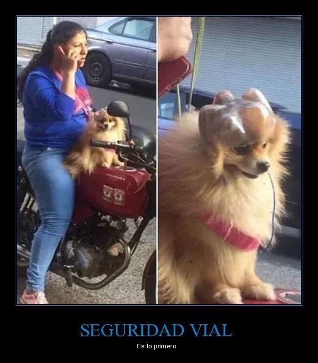 Marcianadas 362 110118001326 (112)