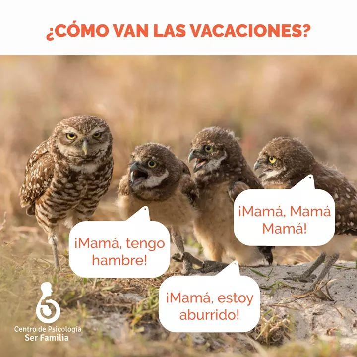 Marcianadas 362 110118001326 (26)