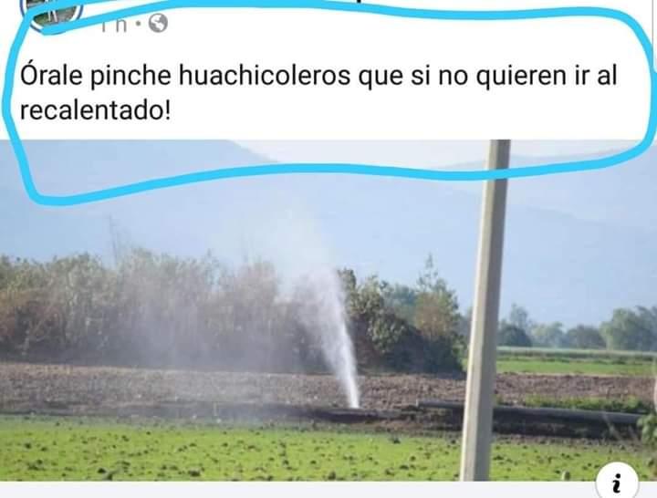 Marcianadas 364 250119001151 (14)