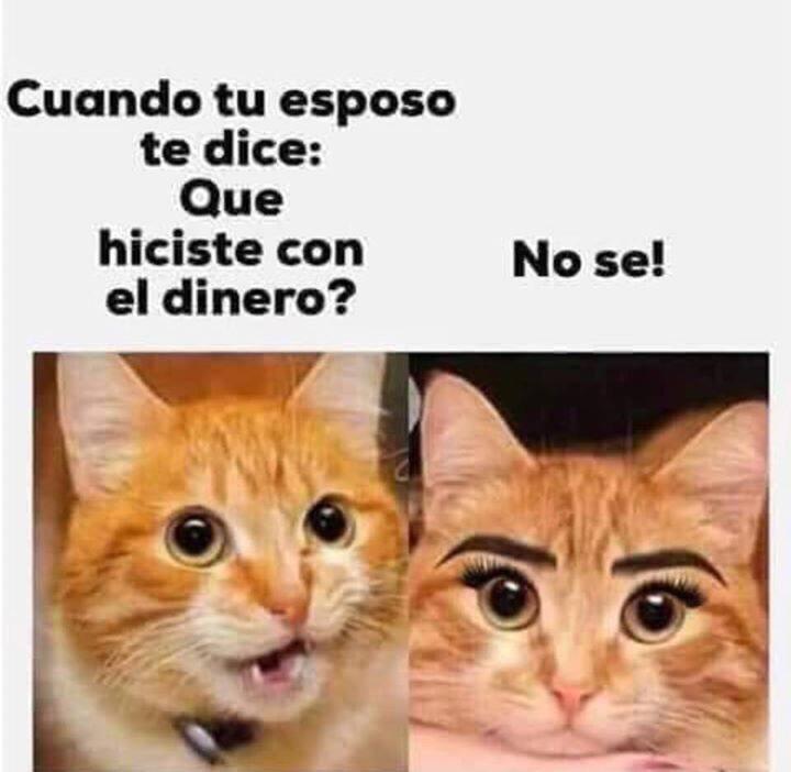 Marcianadas 364 250119001151 (28)