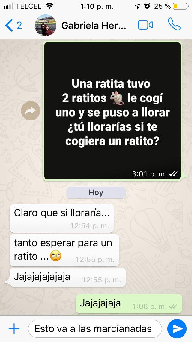 Marcianadas 364 250119001151 (88)
