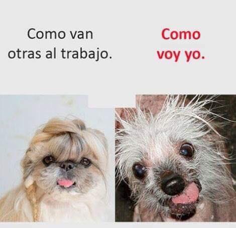 Marcianadas 364 250119001408 (11)