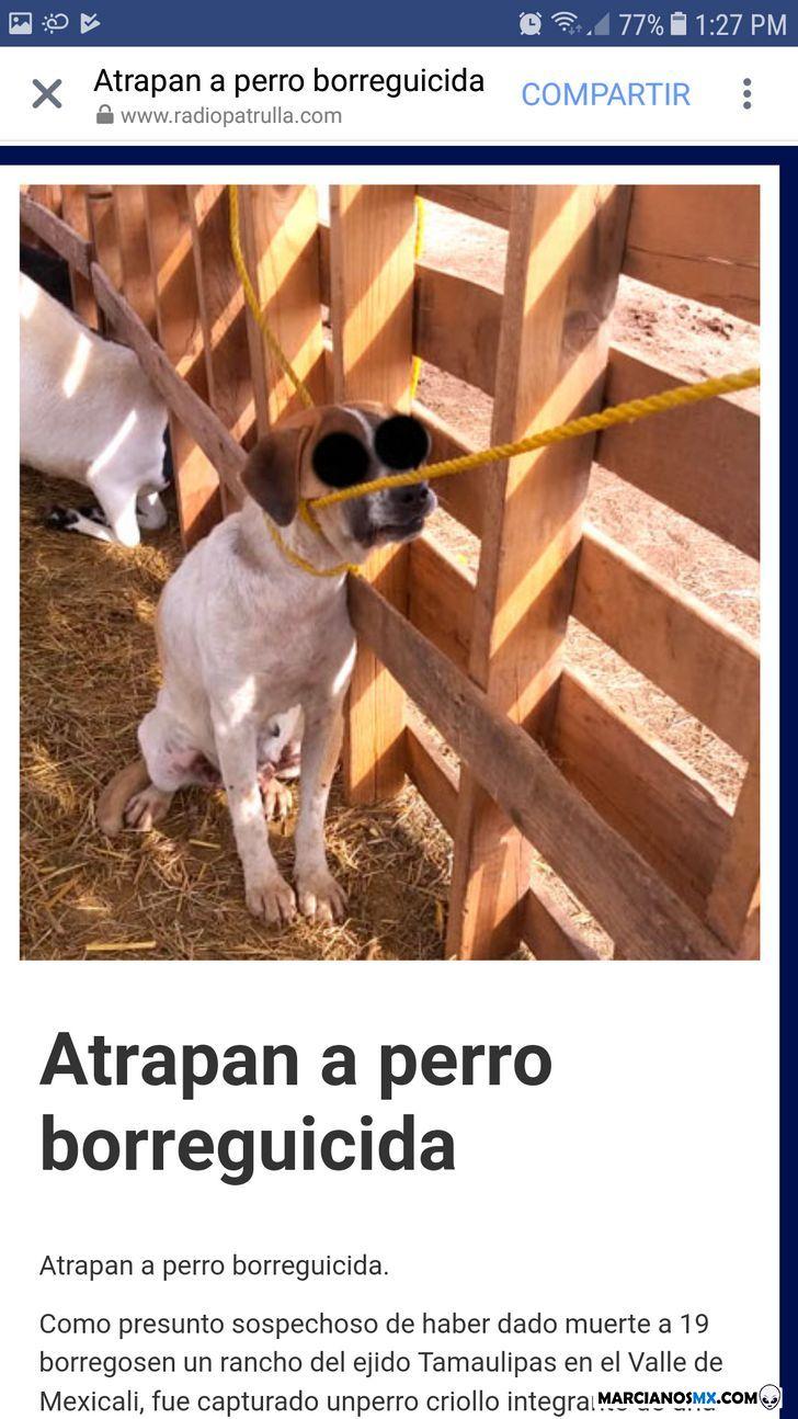 Marcianadas 3691 c4 (1)
