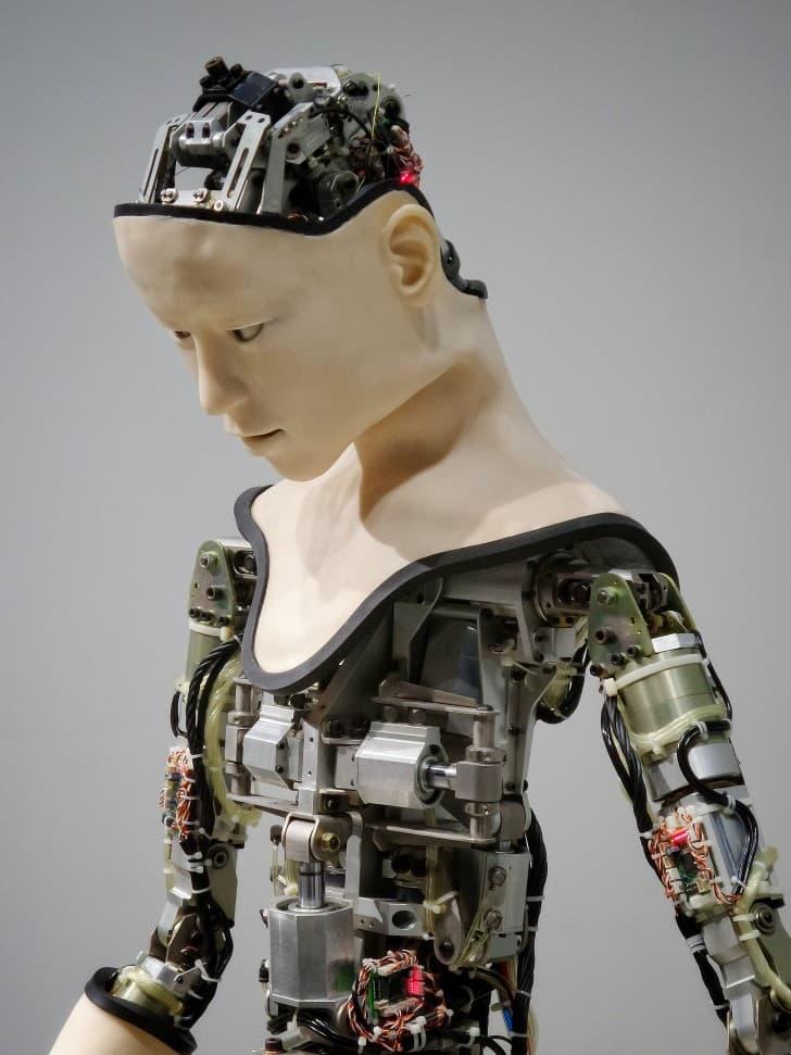 androide mecanismo interno