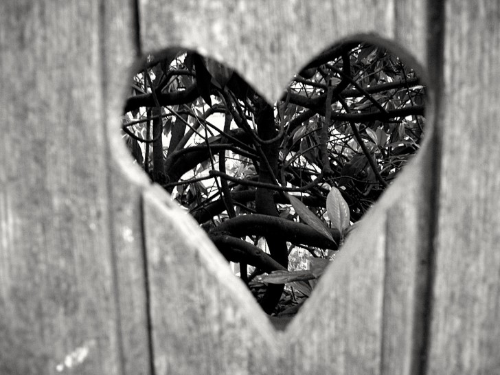 corazon en una cerca