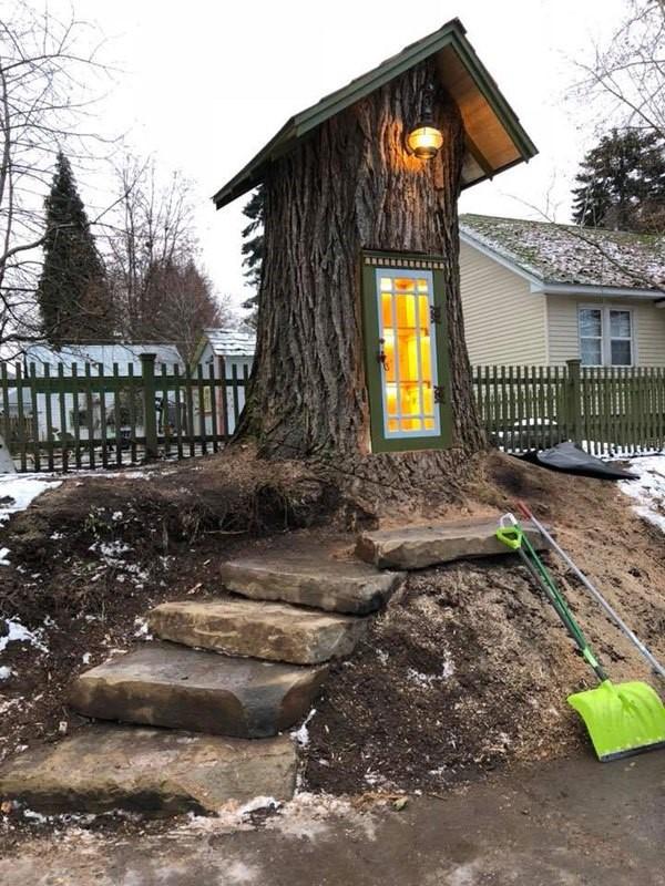 libreria en tronco de arbol (2)