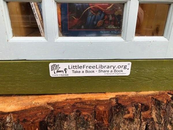 libreria en tronco de arbol (4)