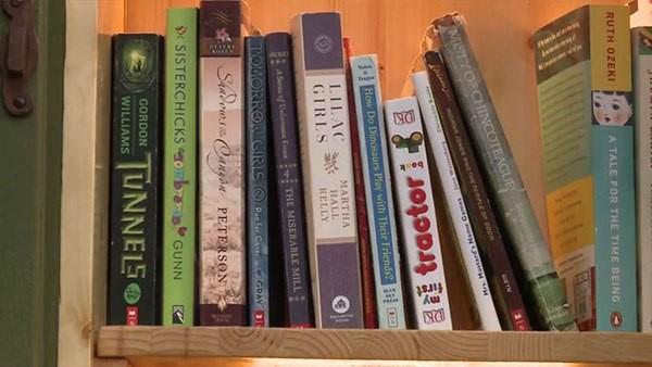 libreria en tronco de arbol (6)