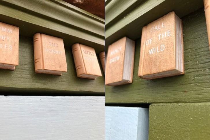libreria en tronco de arbol (9)