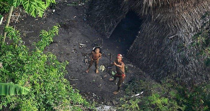 nativos brasileños