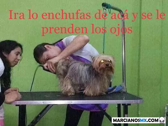 Marcianadas 366 080219001219 (109)