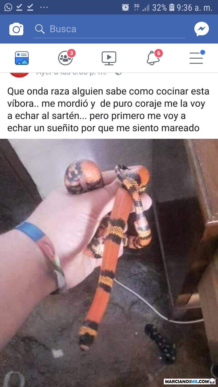 Marcianadas 366 080219001219 (183)