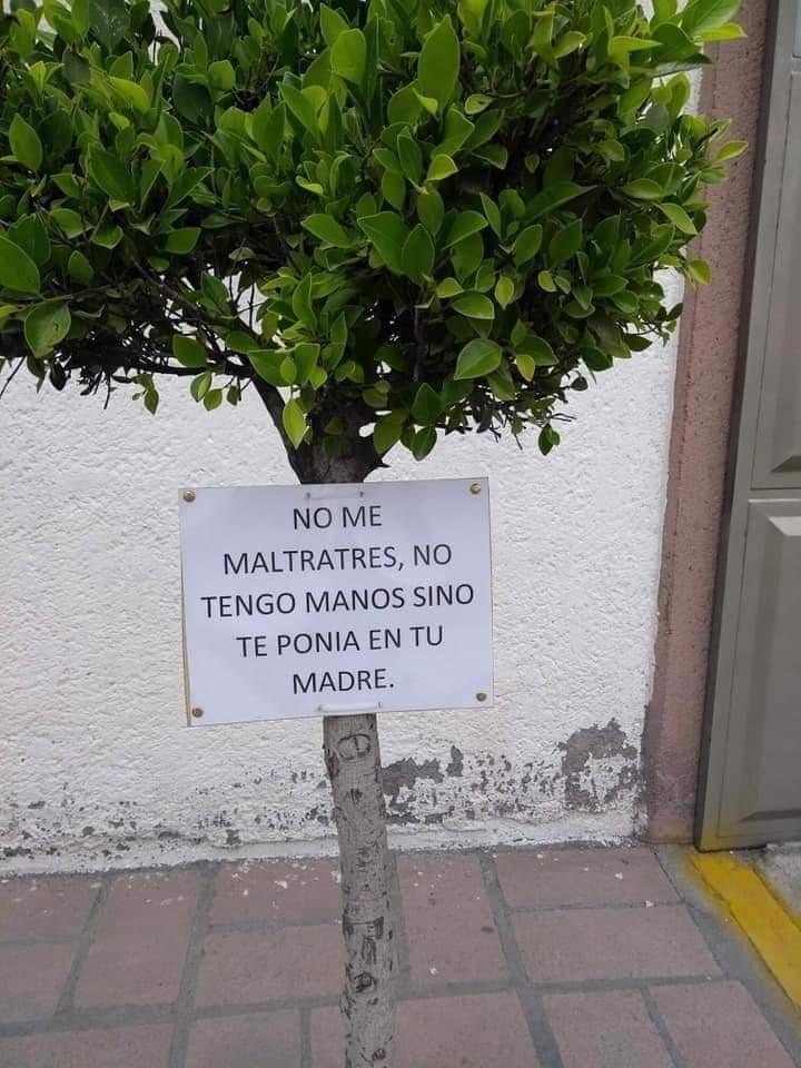 Marcianadas 366 080219001219 (19)