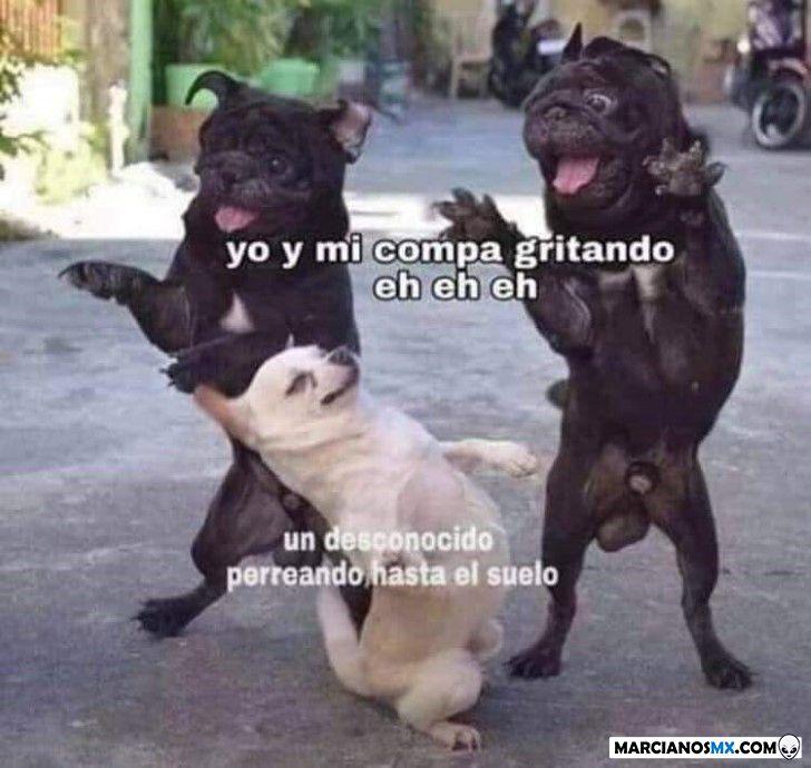 Marcianadas 366 080219001219 (63)