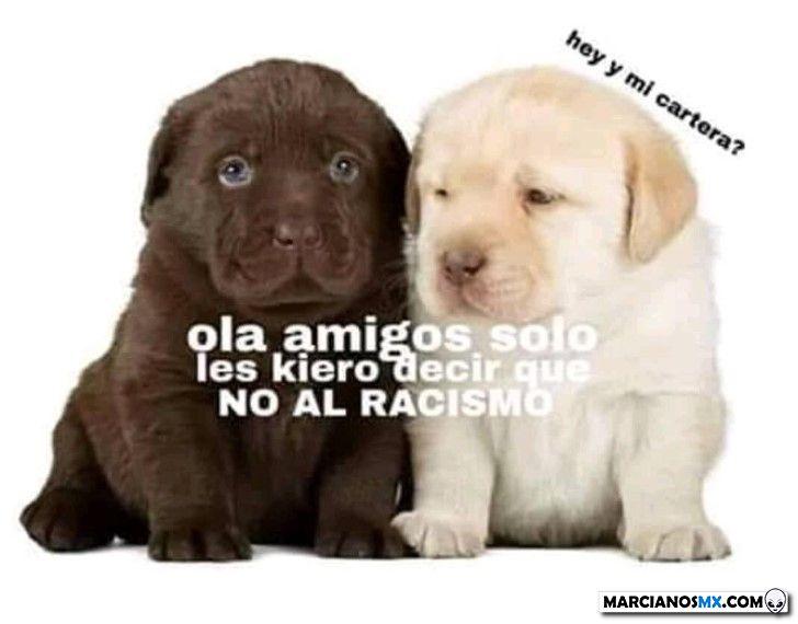 Marcianadas 367 15feb19001326 (128)