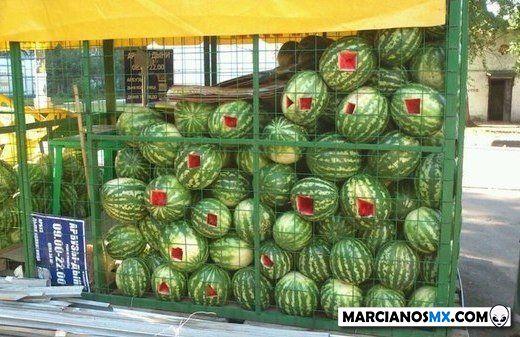 Marcianadas 367 15feb19001326 (204)